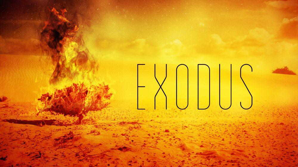 Exodus: Experiencing God